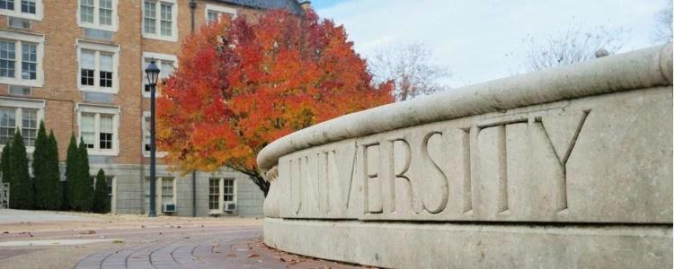 Governance in Universities