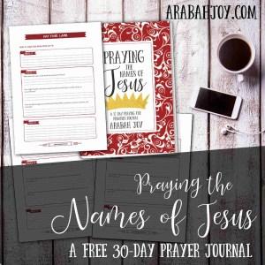 Praying the Names of Jesus 30 Day Advent Journal Arabah Joy
