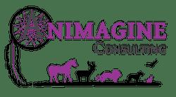animagine-consulting-logo