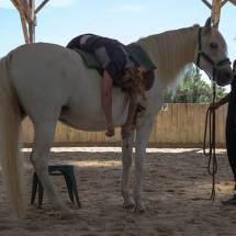 Gina Pitti Equi-Attah yoga à cheval respiration et décontraction