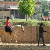 Gina Pitti cours travail à cheval