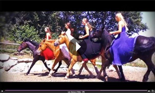 Film «Les chevaux d'Akita» projeté à Montoison le dimanche 11 septembre