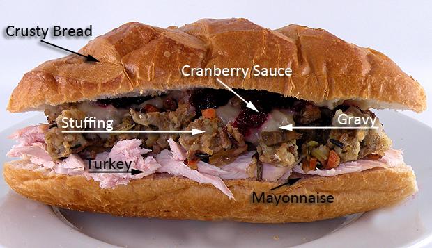 sandwich-anatomy