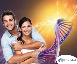 estudio genético  Estudio Genético estudio gen  tico GINE 1