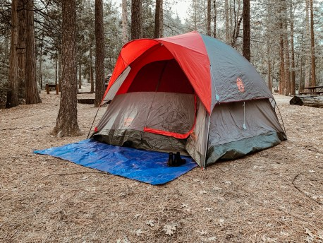 Camping in Idyllwild - Ginger and Ivory