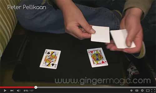 GingermagicTV - Peter Pellicaan