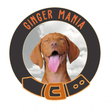 Ginger Mania Pet Accessories and Natural Dog Treats