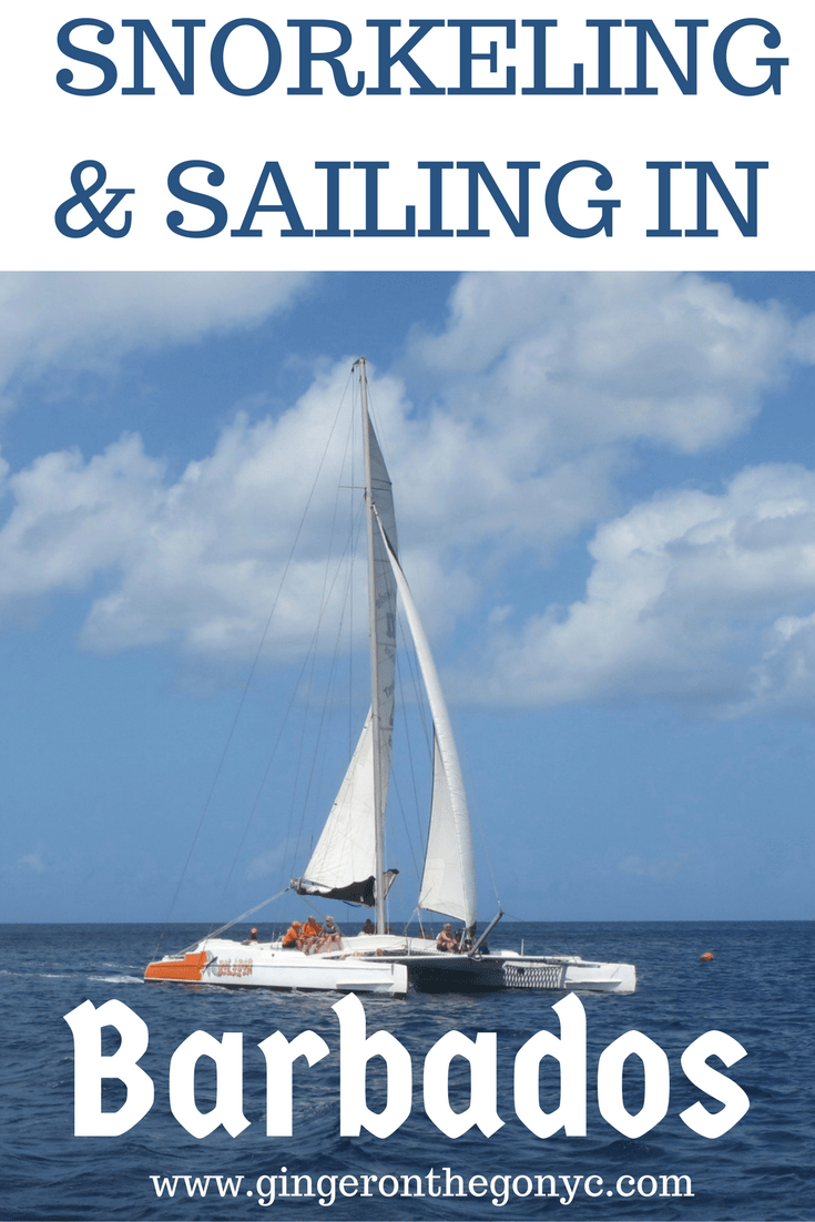 sailing-snorkeling-in-3