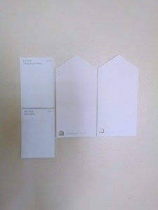 Selecting White Paint Chips