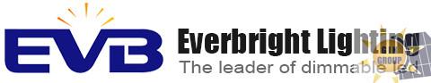 Shenzhen Everbright Lighting Co.,Ltd.