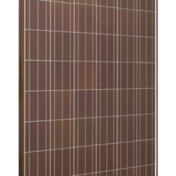 sps istem tile red