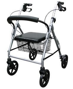 Andador Dayang com 04 rodas e Banco Praxis DY049146L