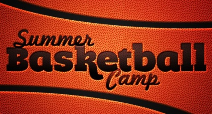 Boys 9-12 Basketball Camp