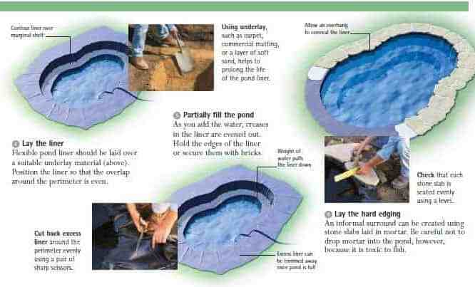 Koi pond construction guide how to build a koi pond you need to know