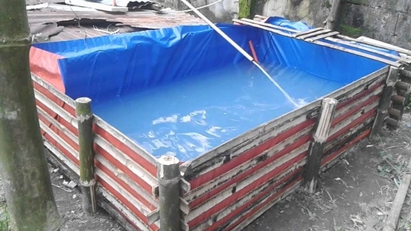 how to build a koi pond made up of tarpaulin fish pond(trapal)