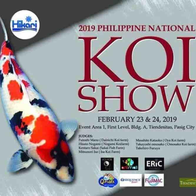 2019 Philippine National Koi Show