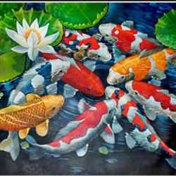 diamond koi fish painting for sale