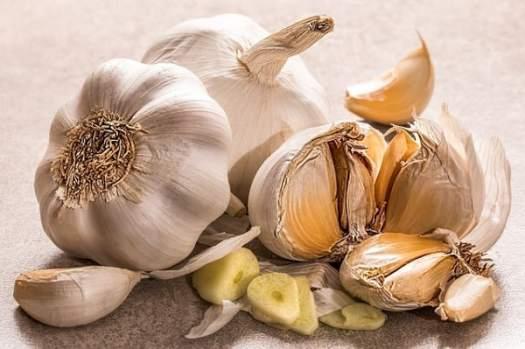 garlic for koi food