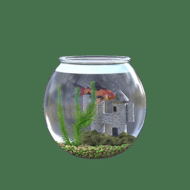 3 gallon glass bowl