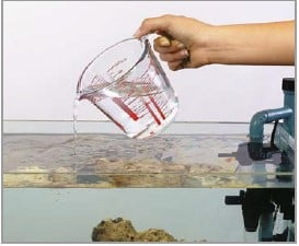 add more water how to do water change on saltwater aquarium