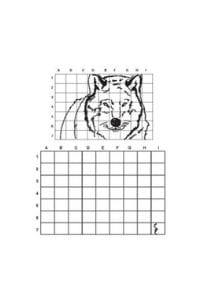 disegni da copiare lupo