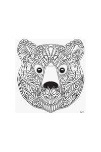 mandala per bambini da colorare orso