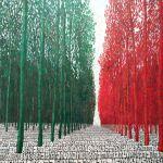Venezia Biennale 2011 Padiglione Italia 1