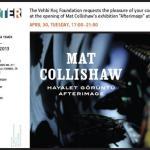 Mat Collishaw Afterimage