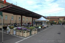 inaugurazione-mercato-contadino-7.jpg