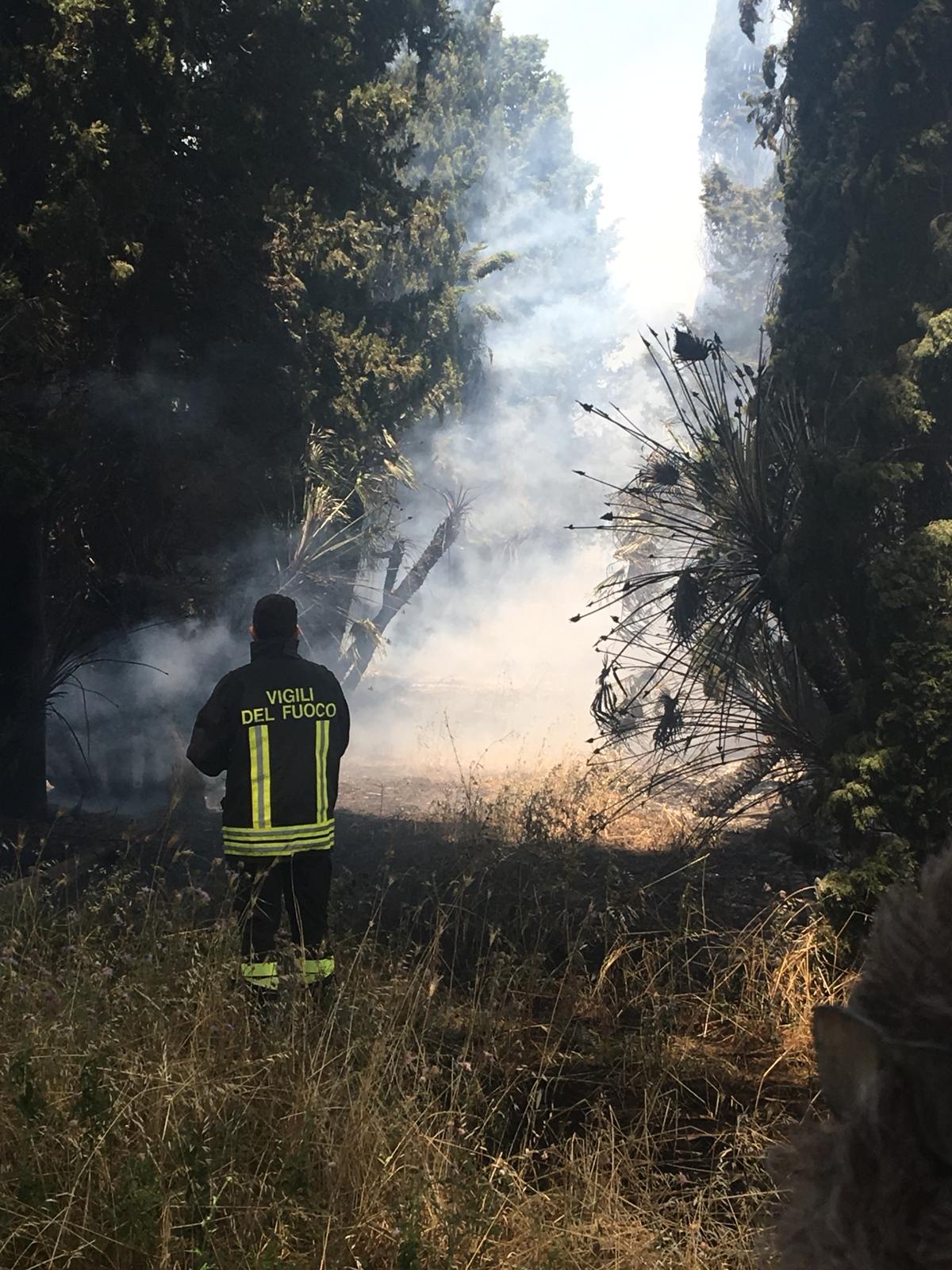 Albano, incendio in un'azienda agricola in via Massimetta