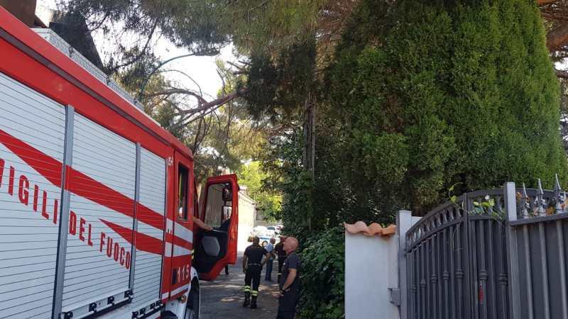 Maltempo, cade il ramo di un pino sulla recinzione del cimitero di Castel Gandolfo (aggiornamento)