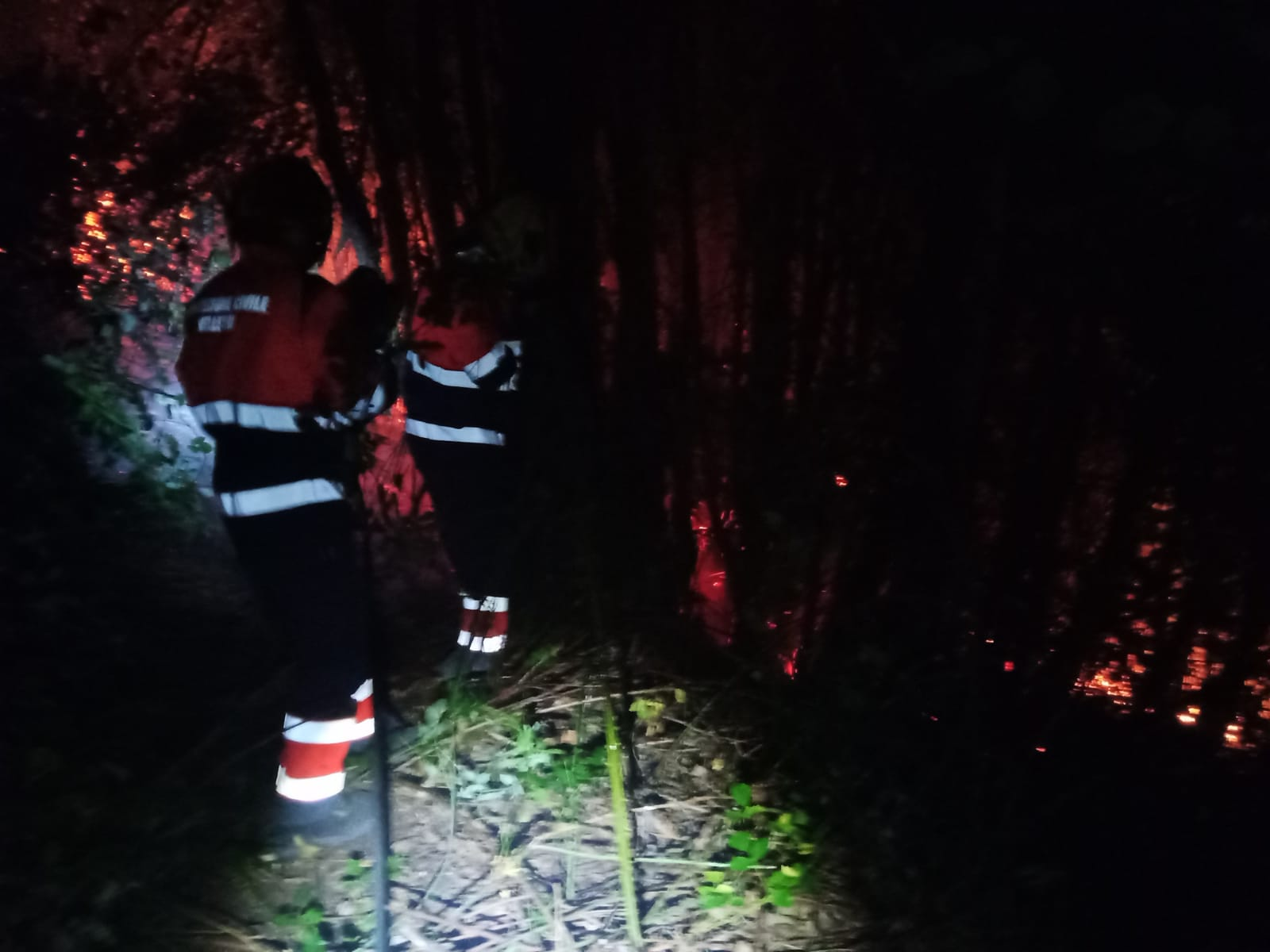 Velletri, si indaga sull'incendio del monte Artemisio
