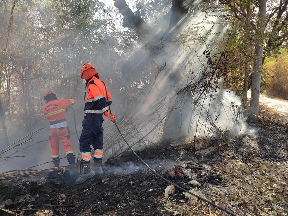 Lanuvio, ancora incendi vicino la ferrovia Roma-Velletri