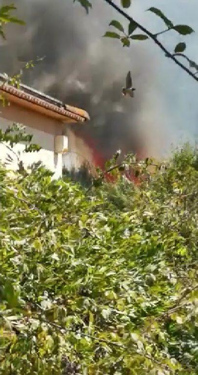 Nettuno, grave incendio al bosco di Foglino