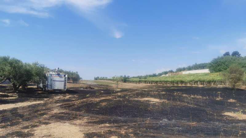 Genzano, prontamente spento dai VVF e dalla protezione civile l'incendio in Via delle Vigne Nuove