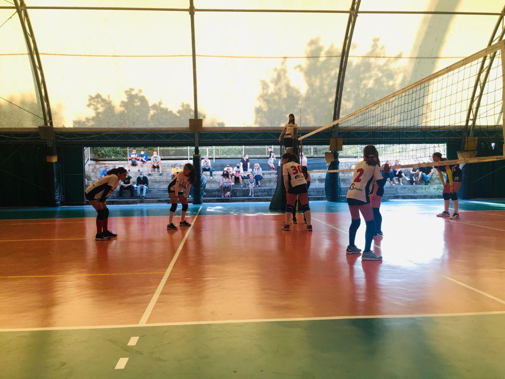 """Frascati, grande entusiasmo per il  Volley Club Frascati, Musetti: """"Boom di richieste per le nostre squadre giovanili"""""""