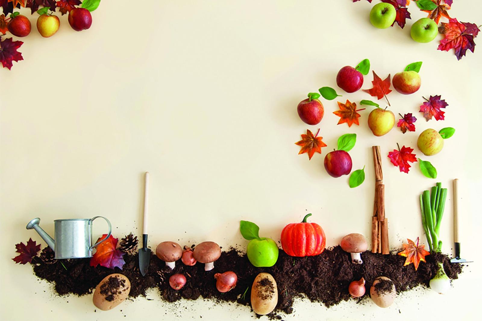 Salute e alimentazione, come prepararsi all'autunno: I consigli della Dottoressa Cristina Mucci