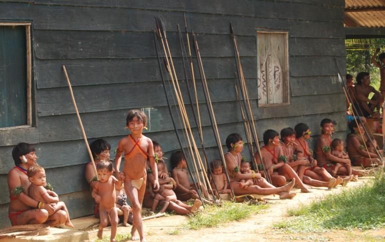 """""""Verità sul massacro degli Yanomami"""""""