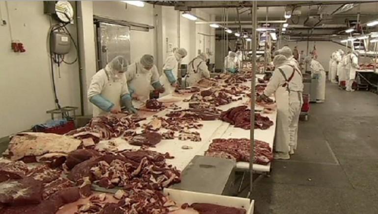 Carne di cavallo, ecco le truffe