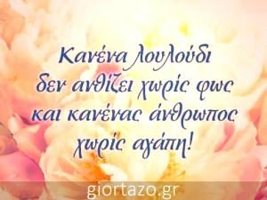Read more about the article ΚΑΝΕΝΑ ΛΟΥΛΟΥΔΙ