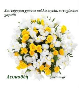 🌸🌹🌷Λευκοθέη Χρόνια Πολλά!……giortazo.gr