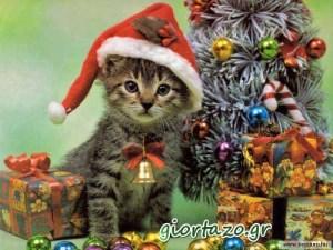 Χριστουγεννιάτικες εικόνες…..giortazo.gr