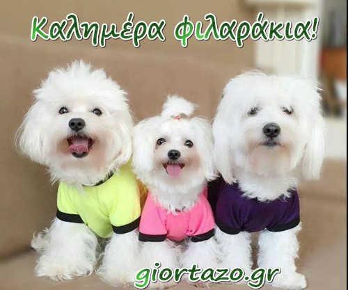 καλημερα σκυλακια