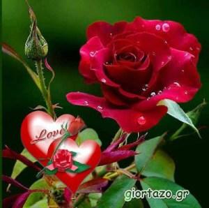 Εικόνες Αγάπης  …giortazo.gr