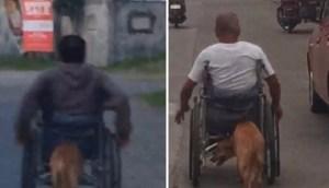 Read more about the article Σκύλος σπρώχνει το αναπηρικό καροτσάκι του αφεντικού του και συγκλονίζει με την πίστη και την αφοσίωσή του