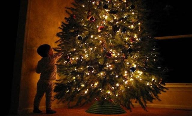 Χριστουγεννιάτικο δέντρο: Αποκαλύφθηκε το λάθος