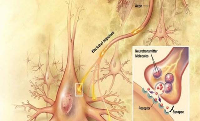 Πώς να υπερφορτώσετε τα επίπεδα ντοπαμίνης