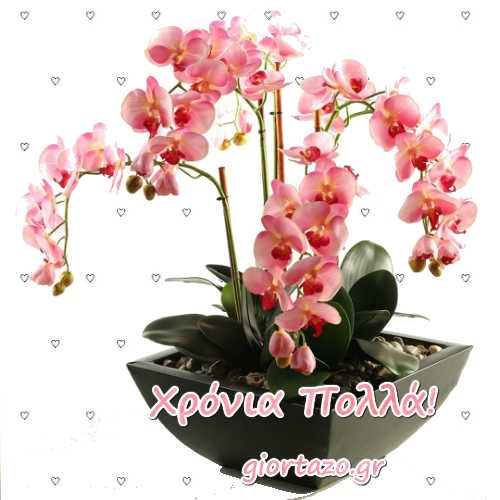 Κάρτες Με Ευχές Χρόνια Πολλά  Λουλούδια