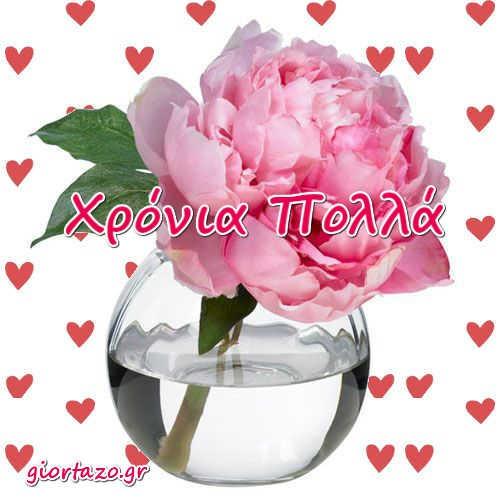 λουλουδι κοκκινες καρδιες