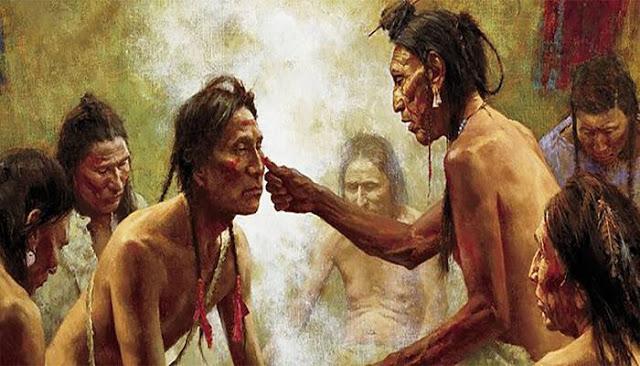 Τα 12 φυτά που χρησιμοποιούσαν οι ιθαγενείς της Αμερικής για να θεραπεύουν τα πάντα (από τον πόνο στις αρθρώσεις μέχρι τον καρκίνο)